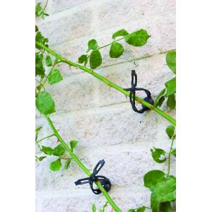 Klimplantband